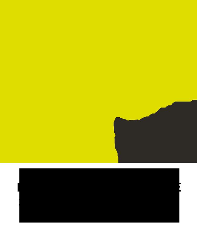 Info Región de Murcia cheque innovación programas de gestión